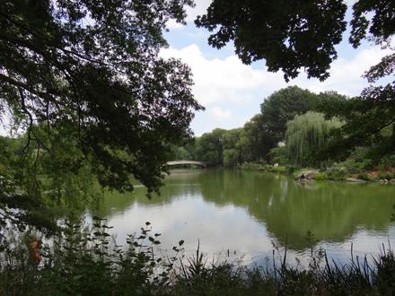 c-central-park3