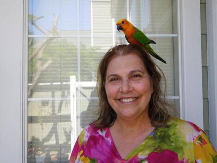 lourdinha-campos-papagaio